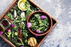 Healing herbs thistle